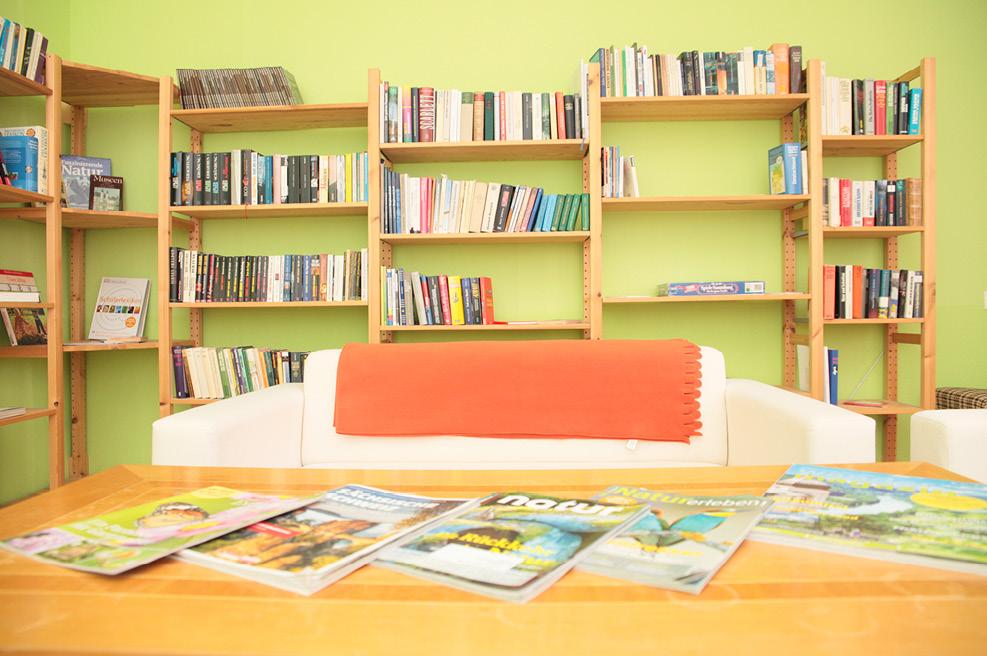 djh jugendherberge pirna copitz angebote mehr sachsen. Black Bedroom Furniture Sets. Home Design Ideas