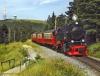 Familienurlaub in Schierke: Harz à la carte