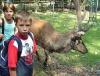 Klassenfahrt in Mansfeld: Die Natur hautnah erleben